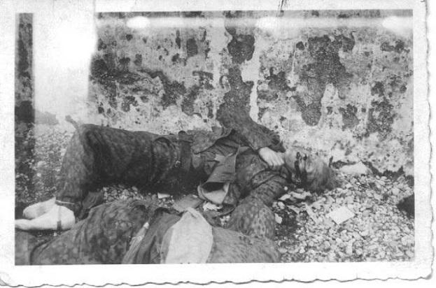 shot-German-guard-Dachau-photo-Sgt.-John-N.-Petro-232-Infantry-E-Company