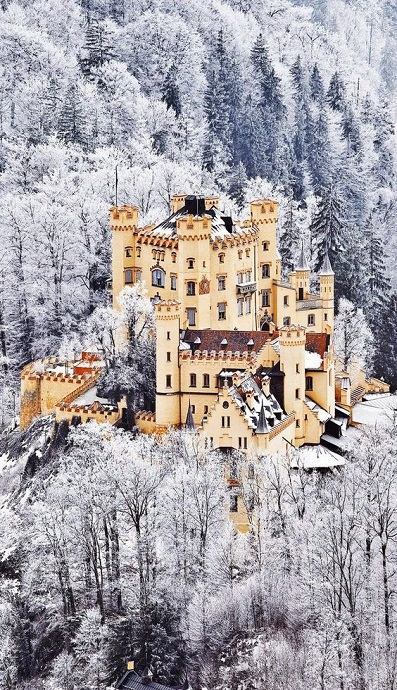 The-Scenic-Castle-of-Hohenschwangau-in-Germany.-Bavaria