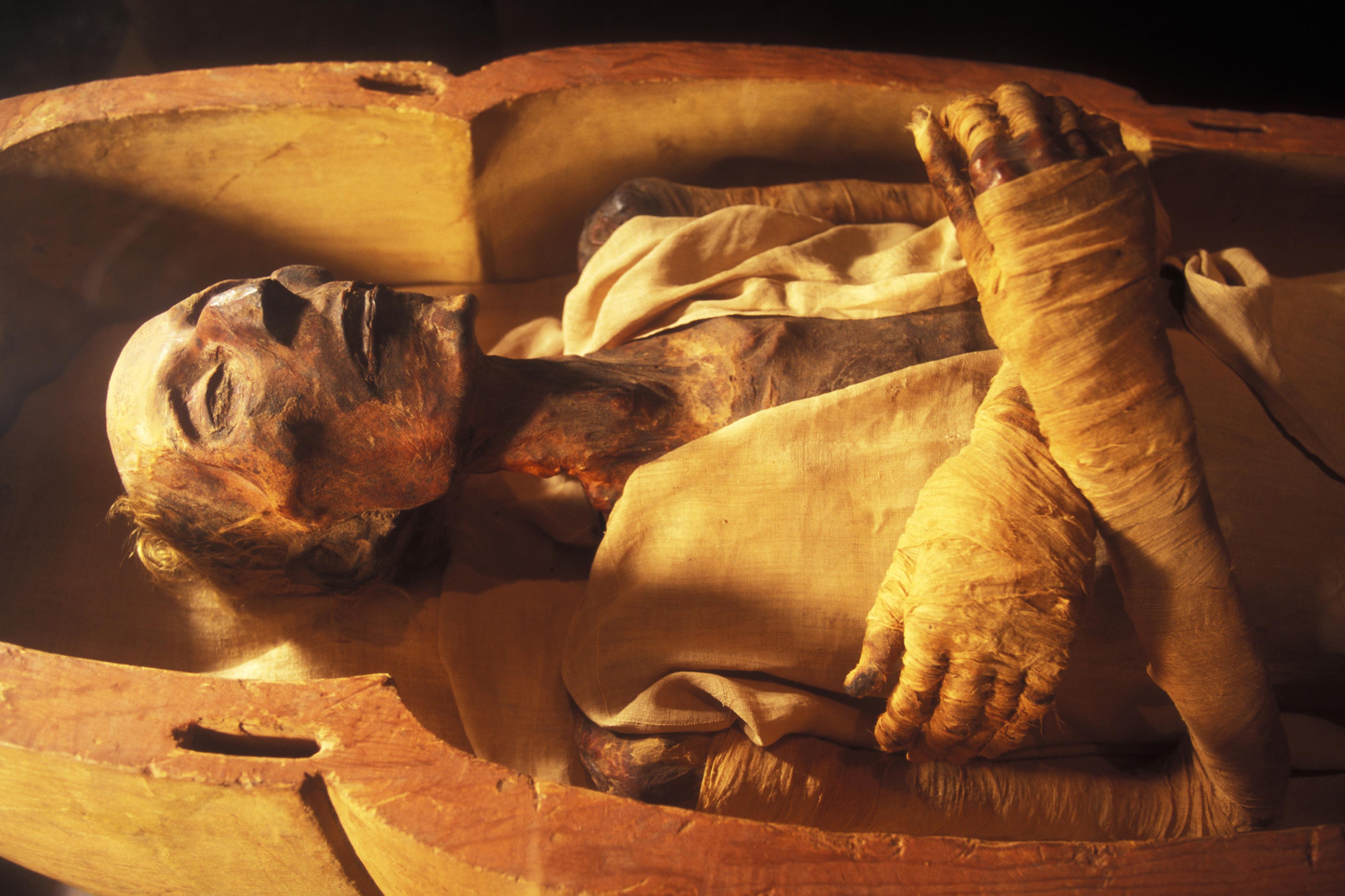White Aryan Egyptian mummy